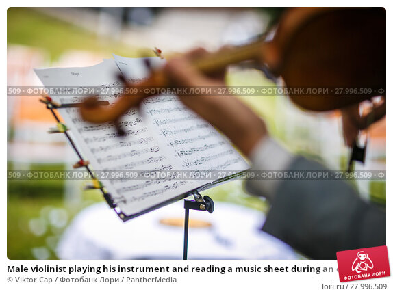 Купить «Male violinist playing his instrument and reading a music sheet during an outdoor summer wedding ceremony (shallow DOF; color toned image)», фото № 27996509, снято 22 июля 2019 г. (c) PantherMedia / Фотобанк Лори