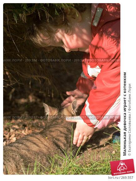 Купить «Маленькая девочка играет с котенком», фото № 269557, снято 2 мая 2008 г. (c) Екатерина Соловьева / Фотобанк Лори