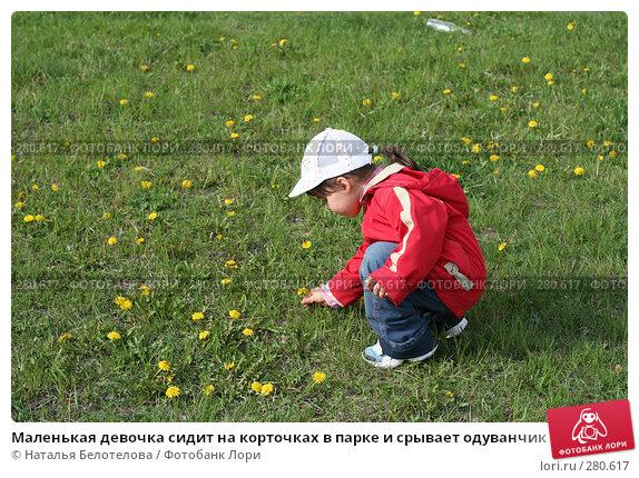 Маленькая девочка сидит на корточках в парке и срывает одуванчик, фото № 280617, снято 10 мая 2008 г. (c) Наталья Белотелова / Фотобанк Лори