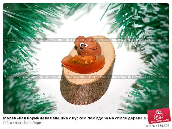Маленькая коричневая мышка с куском помидора на спиле дерева в обрамлении зеленой мишуры, фото № 139397, снято 19 января 2017 г. (c) Fro / Фотобанк Лори