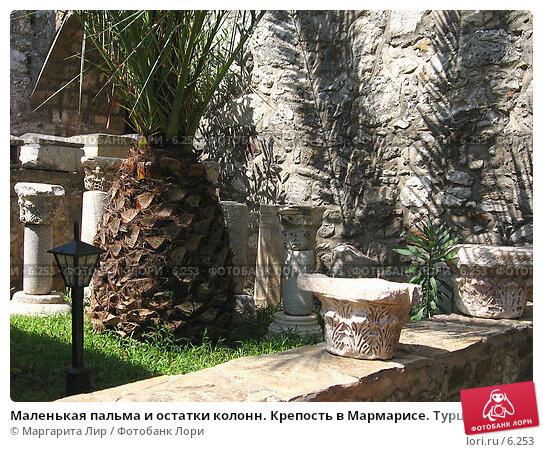 Маленькая пальма и остатки колонн. Крепость в Мармарисе. Турция., фото № 6253, снято 12 июля 2006 г. (c) Маргарита Лир / Фотобанк Лори