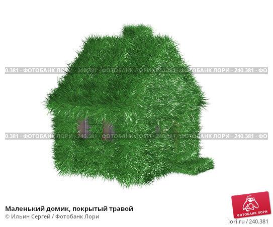 Маленький домик, покрытый травой, иллюстрация № 240381 (c) Ильин Сергей / Фотобанк Лори