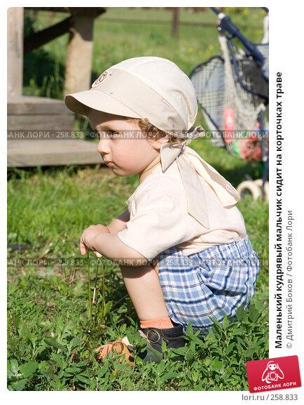 Маленький кудрявый мальчик сидит на корточках траве, фото № 258833, снято 3 июня 2006 г. (c) Дмитрий Боков / Фотобанк Лори
