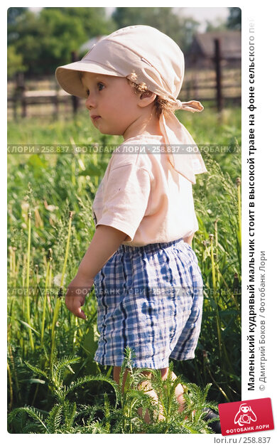 Маленький кудрявый мальчик стоит в высокой траве на фоне сельского пейзажа, фото № 258837, снято 3 июня 2006 г. (c) Дмитрий Боков / Фотобанк Лори
