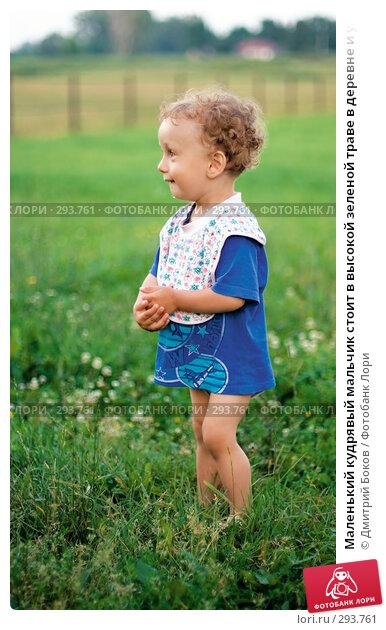 Маленький кудрявый мальчик стоит в высокой зеленой траве в деревне и улыбается (2), фото № 293761, снято 15 июля 2006 г. (c) Дмитрий Боков / Фотобанк Лори