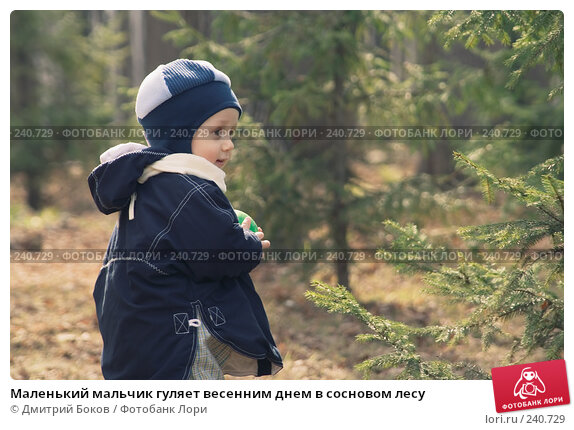 Маленький мальчик гуляет весенним днем в сосновом лесу, фото № 240729, снято 15 апреля 2006 г. (c) Дмитрий Боков / Фотобанк Лори