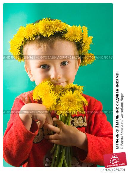 Маленький мальчик с одуванчиками, фото № 289701, снято 18 мая 2008 г. (c) Елена Блохина / Фотобанк Лори