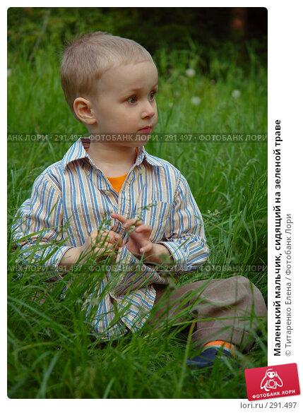 Маленький мальчик, сидящий на зеленой траве, фото № 291497, снято 18 мая 2008 г. (c) Титаренко Елена / Фотобанк Лори