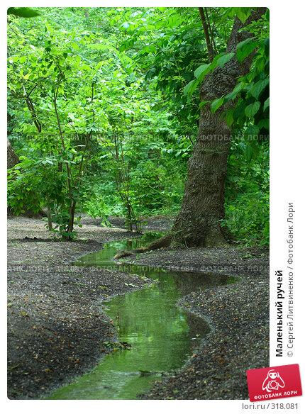 Маленький ручей, фото № 318081, снято 8 июня 2008 г. (c) Сергей Литвиненко / Фотобанк Лори