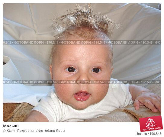Малыш, фото № 190545, снято 27 октября 2016 г. (c) Юлия Селезнева / Фотобанк Лори