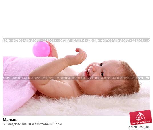 Купить «Малыш», фото № 258309, снято 18 апреля 2007 г. (c) Гладских Татьяна / Фотобанк Лори