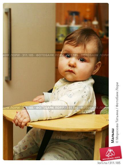 Малыш, фото № 311185, снято 13 декабря 2005 г. (c) Морозова Татьяна / Фотобанк Лори