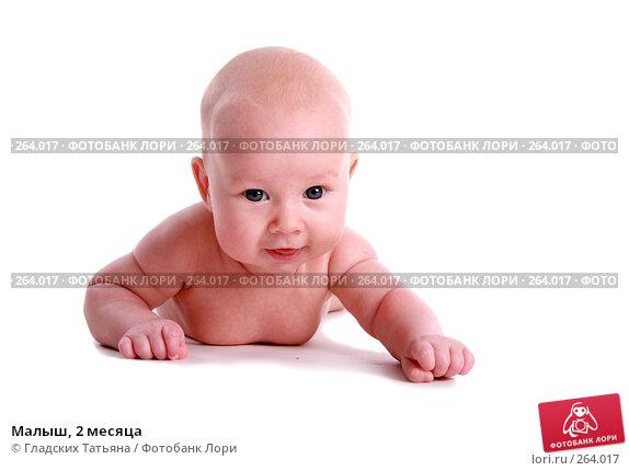 Купить «Малыш, 2 месяца», фото № 264017, снято 24 апреля 2007 г. (c) Гладских Татьяна / Фотобанк Лори