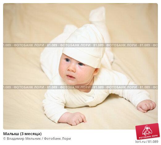 Купить «Малыш (3 месяца)», фото № 81089, снято 27 августа 2007 г. (c) Владимир Мельник / Фотобанк Лори