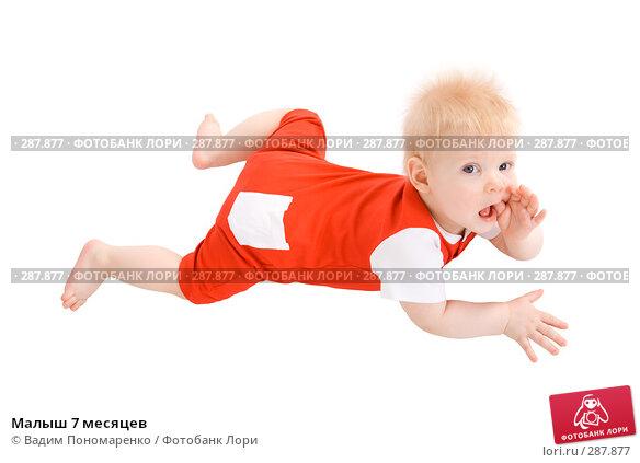 Малыш 7 месяцев, фото № 287877, снято 29 февраля 2008 г. (c) Вадим Пономаренко / Фотобанк Лори