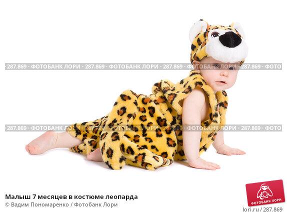 Малыш 7 месяцев в костюме леопарда, фото № 287869, снято 29 февраля 2008 г. (c) Вадим Пономаренко / Фотобанк Лори