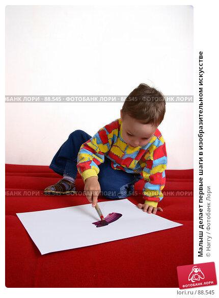 Малыш делает первые шаги в изобразительном искусстве, фото № 88545, снято 4 июня 2007 г. (c) Harry / Фотобанк Лори