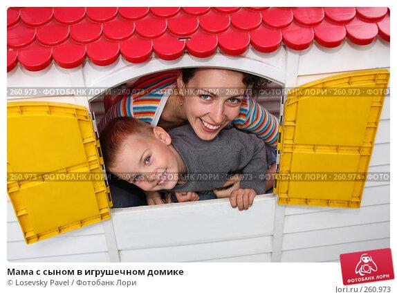 Мама с сыном в игрушечном домике, фото № 260973, снято 18 февраля 2017 г. (c) Losevsky Pavel / Фотобанк Лори