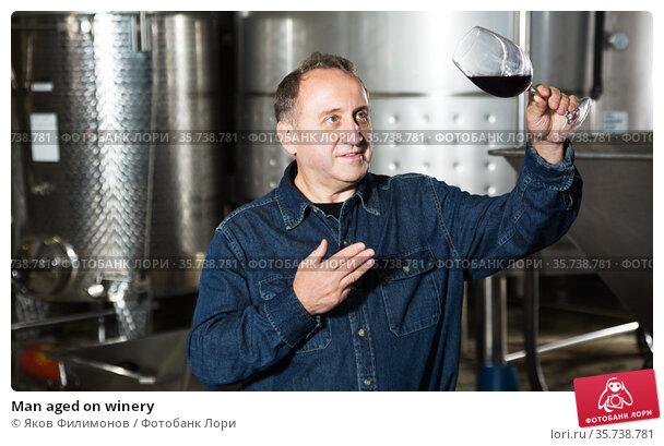 Man aged on winery. Стоковое фото, фотограф Яков Филимонов / Фотобанк Лори