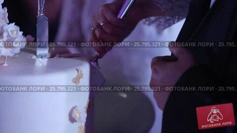 Man and woman cutting celebration cake, видеоролик № 25795321, снято 16 марта 2016 г. (c) Алексей Макаров / Фотобанк Лори
