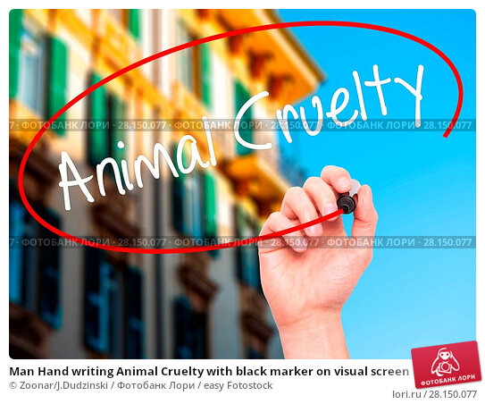 Купить «Man Hand writing Animal Cruelty with black marker on visual screen», фото № 28150077, снято 21 июня 2018 г. (c) easy Fotostock / Фотобанк Лори