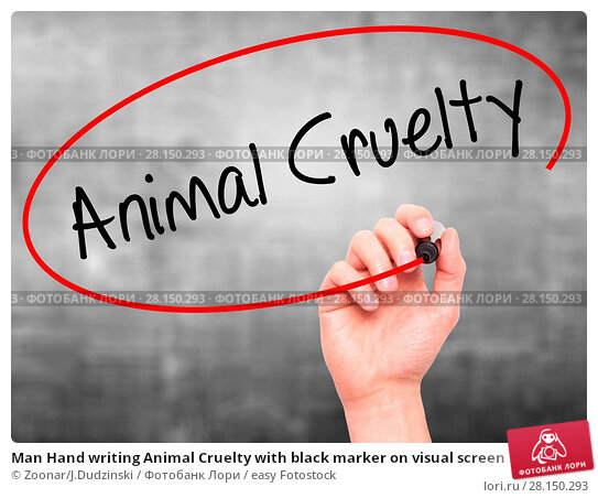 Купить «Man Hand writing Animal Cruelty with black marker on visual screen», фото № 28150293, снято 21 июня 2018 г. (c) easy Fotostock / Фотобанк Лори