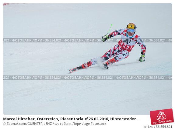 Marcel Hirscher, Österreich, Riesentorlauf 26.02.2016, Hinterstoder... Стоковое фото, фотограф Zoonar.com/GUENTER LENZ / age Fotostock / Фотобанк Лори