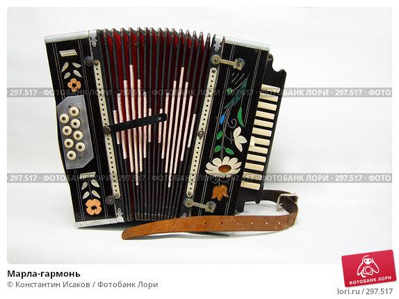 Купить «Марла-гармонь», фото № 297517, снято 24 мая 2008 г. (c) Константин Исаков / Фотобанк Лори