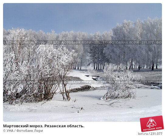 Мартовский мороз. Рязанская область., фото № 231077, снято 22 марта 2008 г. (c) УНА / Фотобанк Лори