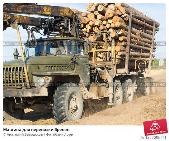 Машина для перевозки бревен, фото № 256441, снято 3 августа 2006 г. (c) Анатолий Заводсков / Фотобанк Лори