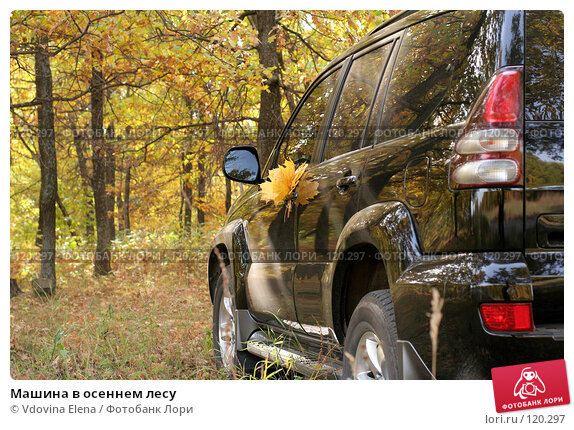 Машина в осеннем лесу, фото № 120297, снято 7 октября 2007 г. (c) Vdovina Elena / Фотобанк Лори