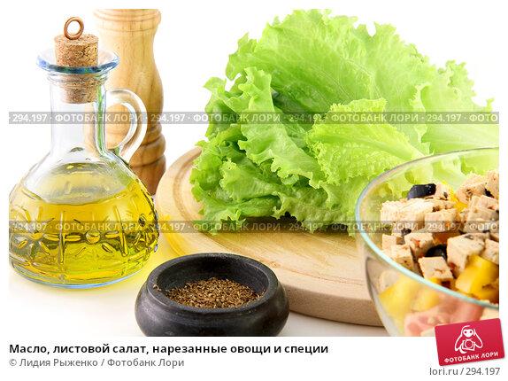 Масло, листовой салат, нарезанные овощи и специи, фото № 294197, снято 12 мая 2008 г. (c) Лидия Рыженко / Фотобанк Лори
