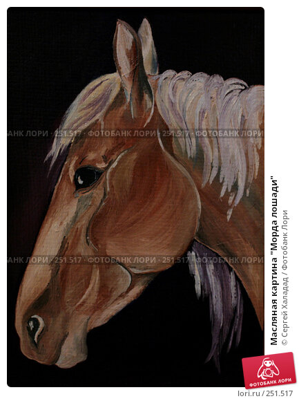 "Масляная картина ""Морда лошади"", иллюстрация № 251517 (c) Сергей Халадад / Фотобанк Лори"