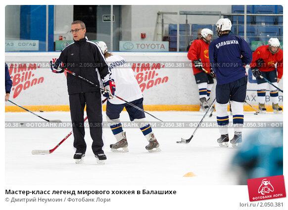 Купить «Мастер-класс легенд мирового хоккея в Балашихе», эксклюзивное фото № 2050381, снято 13 октября 2010 г. (c) Дмитрий Неумоин / Фотобанк Лори