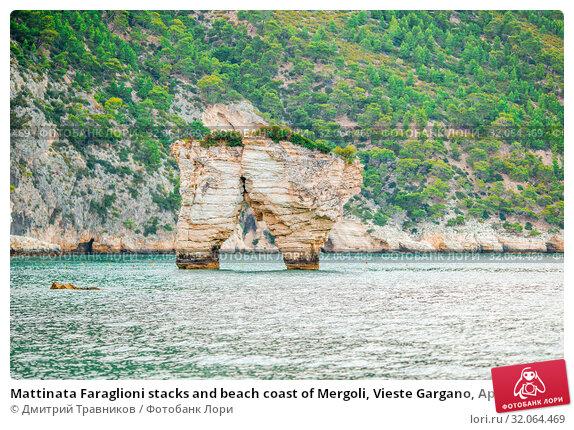 Mattinata Faraglioni stacks and beach coast of Mergoli, Vieste Gargano, Apulia, Italy. Стоковое фото, фотограф Дмитрий Травников / Фотобанк Лори