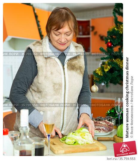 Mature woman cooking christmas dinner. Стоковое фото, фотограф Яков Филимонов / Фотобанк Лори