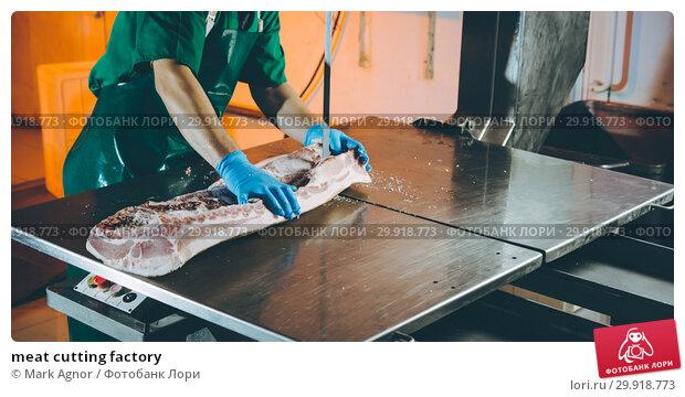 Купить «meat cutting factory», фото № 29918773, снято 7 февраля 2019 г. (c) Mark Agnor / Фотобанк Лори