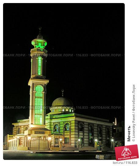 Мечеть, фото № 116833, снято 8 января 2006 г. (c) Losevsky Pavel / Фотобанк Лори