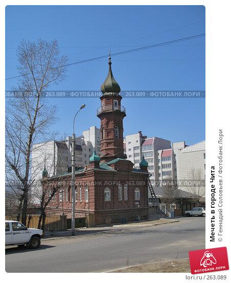 Мечеть в городе Чита, фото № 263089, снято 23 апреля 2008 г. (c) Геннадий Соловьев / Фотобанк Лори