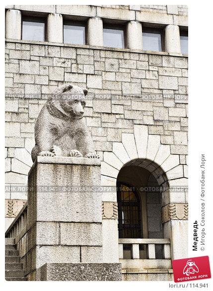 Медведь, фото № 114941, снято 23 сентября 2017 г. (c) Игорь Соколов / Фотобанк Лори