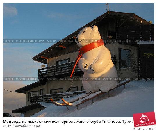 Медведь на лыжах - символ горнолыжного клуба Тягачева, Турист, Подмосковье, фото № 50881, снято 13 декабря 2003 г. (c) Fro / Фотобанк Лори