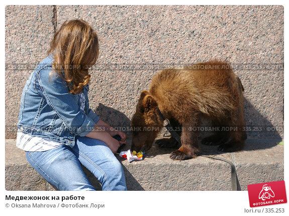 Медвежонок на работе, фото № 335253, снято 13 июня 2008 г. (c) Oksana Mahrova / Фотобанк Лори