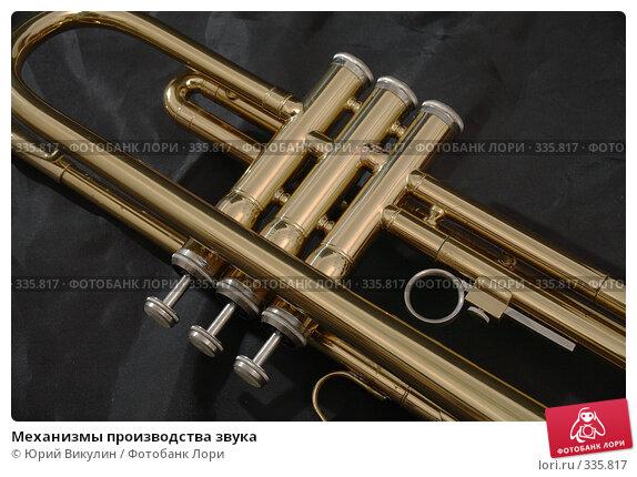 Механизмы производства звука, фото № 335817, снято 18 июня 2008 г. (c) Юрий Викулин / Фотобанк Лори
