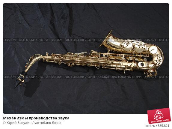 Механизмы производства звука, фото № 335821, снято 18 июня 2008 г. (c) Юрий Викулин / Фотобанк Лори