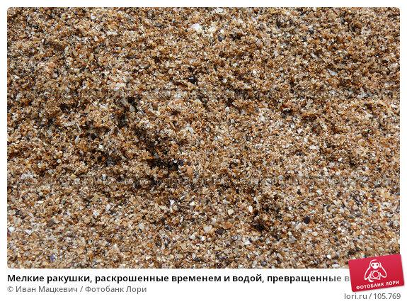 Мелкие ракушки, раскрошенные временем и водой, превращенные в песок. Крым., фото № 105769, снято 10 сентября 2007 г. (c) Иван Мацкевич / Фотобанк Лори
