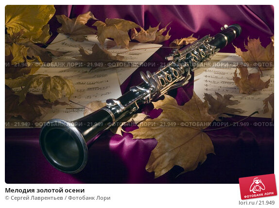 Мелодия золотой осени, фото № 21949, снято 22 октября 2016 г. (c) Сергей Лаврентьев / Фотобанк Лори
