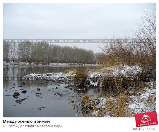 Между осенью и зимой, фото № 137169, снято 6 ноября 2007 г. (c) Сергей Девяткин / Фотобанк Лори