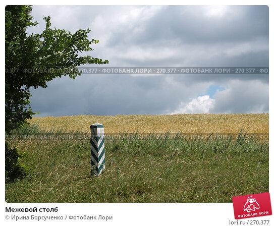 Купить «Межевой столб», фото № 270377, снято 20 июня 2007 г. (c) Ирина Борсученко / Фотобанк Лори