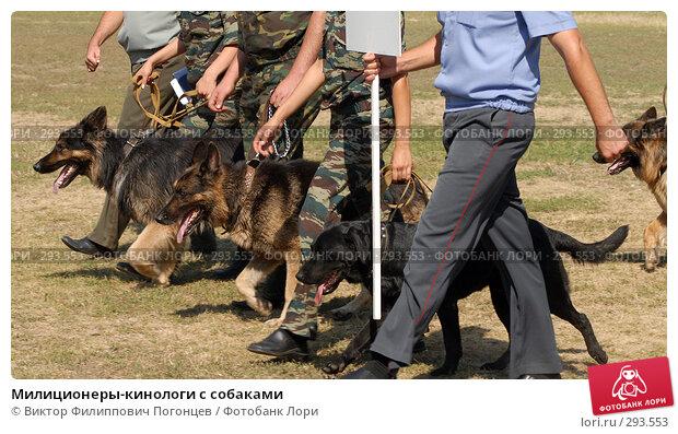 Милиционеры-кинологи с собаками, фото № 293553, снято 27 июля 2007 г. (c) Виктор Филиппович Погонцев / Фотобанк Лори