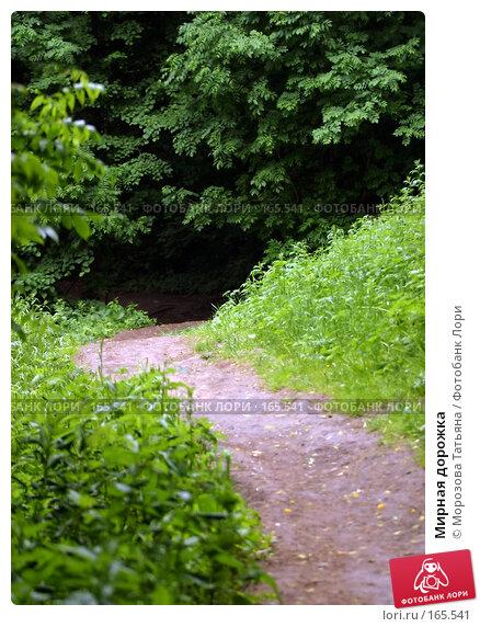 Мирная дорожка, фото № 165541, снято 15 июня 2006 г. (c) Морозова Татьяна / Фотобанк Лори